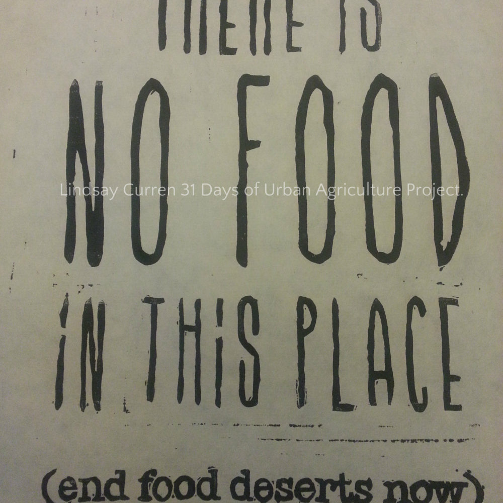 End food deserts now